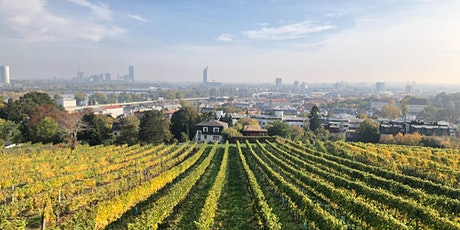 Weinwanderung bergab: Den Kahlenberg hinunter Tickets