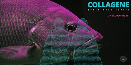 COLLAGENE - Proteine Culturali #1 tickets