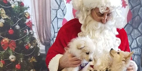 Pet Photos with Social Distance Santa - Benefiting Charlotte Black Dogs tickets