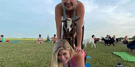 Goat Yoga at Hilltop Wine Garden tickets