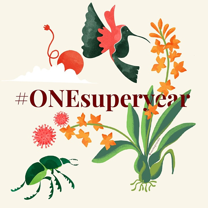 Super Year for Nature - ONE Network Event - University of Oxford image