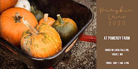 Pumpkin Lane 2020 tickets