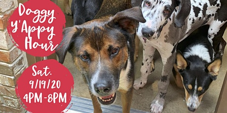 Dog Happy Hour @ Chef Point Watauga By Camp Bow Wow Colleyville tickets