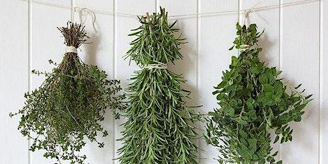 Virtual Workshop: Preserving Kitchen Herbs tickets