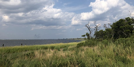 Respect Jamaica Bay Cleanup at Dubos Point Wildlife Sanctuary tickets