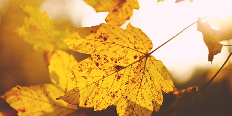 Autumn Equinox - Group Healing tickets
