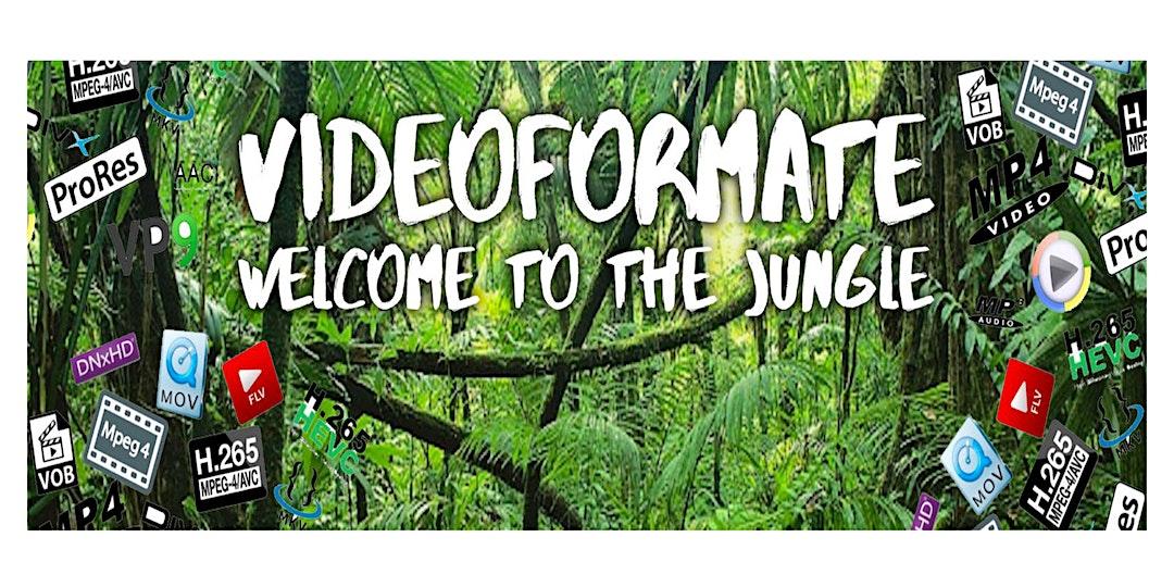 Willkommen im Dschungel der Videoformate