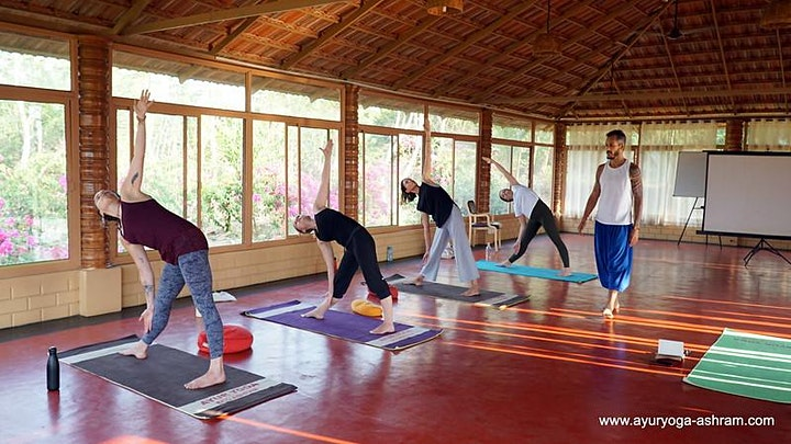 Hatha Yoga with Amilton image