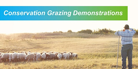 Sheep Grazing Demonstrations tickets