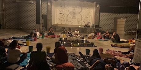 Retiro Terapéutico en Veracruz con Ayahuasca/Bufo/Kambó