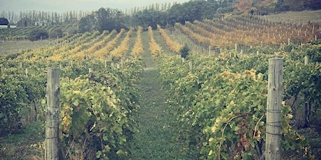 Vine To Wine Tour October tickets
