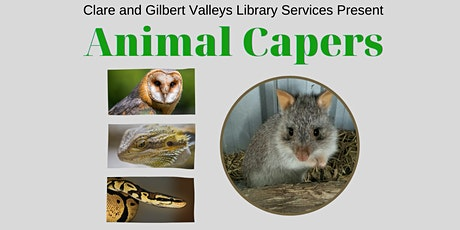 Clare Library presents Animal Capers tickets