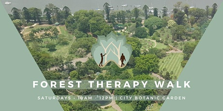 Forest Therapy - Mindfulness in the City Botanic Gardens tickets