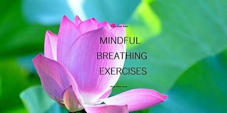 Breathwork & Self-care for Lung and Immune System Support tickets