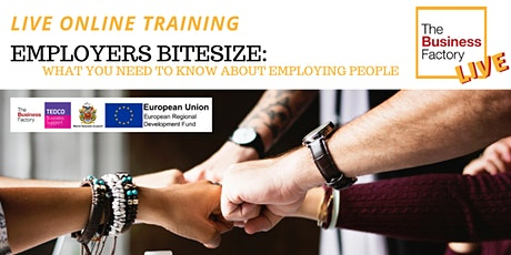 ONLINE- Employers Bitesize: Employing people-  10am to 12pm tickets