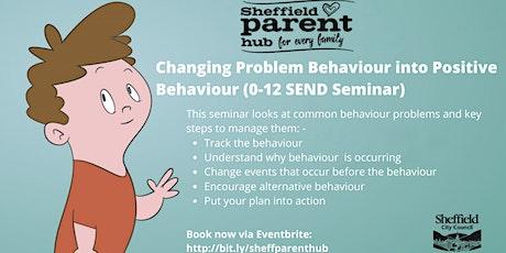 Seminar - Changing Problem Behaviour into Positive Behaviour (0-12 SEND) tickets