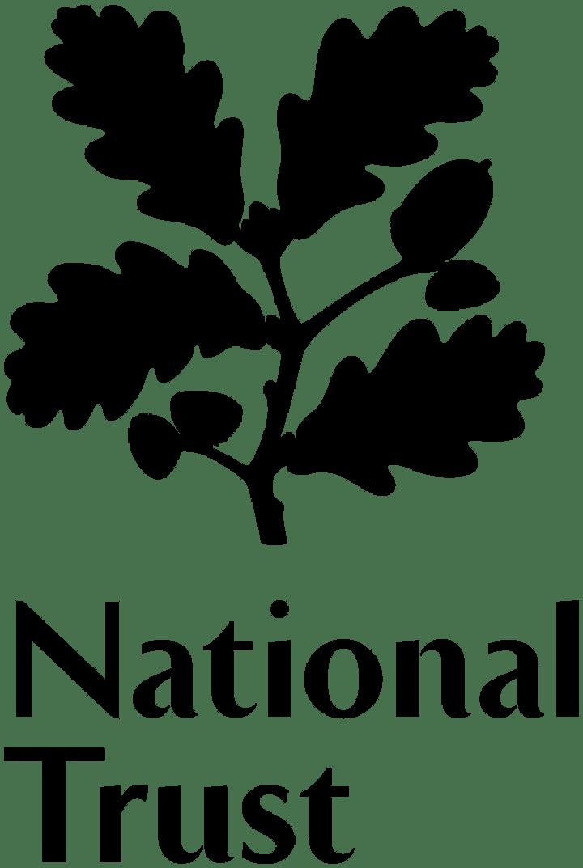 The Big Green Draw: Northumberland Seabirds Online workshop image