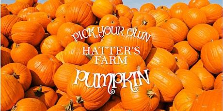 Hatter's Farm Pick Your Own Pumpkin tickets