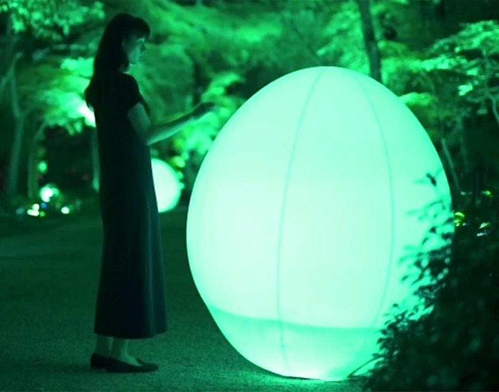 Afbeelding van Japan Light & Food Festival