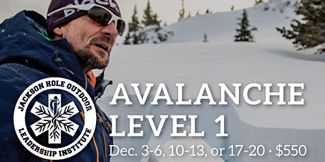 Avalanche Level 1 tickets