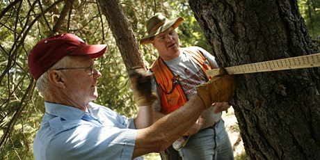 WSU Online Coached Planning - Forest Stewardship Short Course tickets