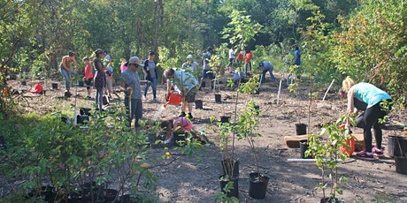 Sustainable Orangeville Community Tree Planting tickets