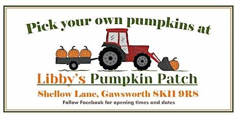 Libbys Pumpkin Patch tickets