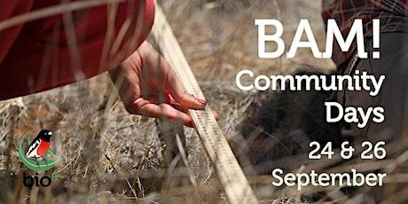 BAM! Community Days tickets