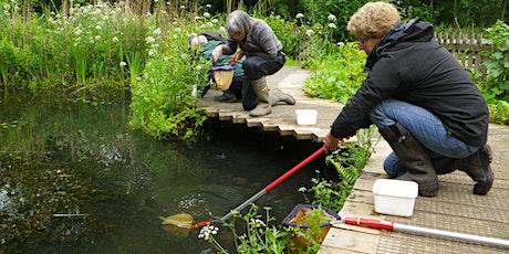 Pond Dipping & Wildlife Identification tickets