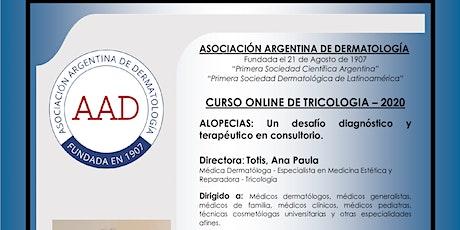 CURSO ONLINE DE TRICOLOGÍA – 2020 MODULO III - IV -V entradas