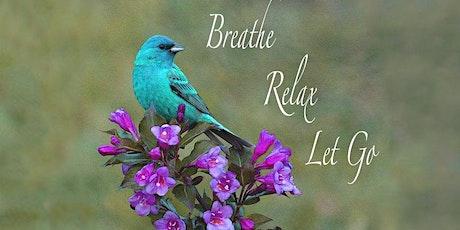 Online Group Breathwork Sessions Every Sunday biglietti