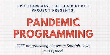 Pandemic Programming: Intermediate/Advanced Python tickets