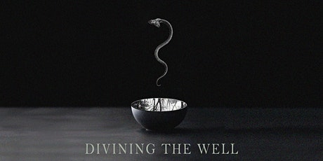 DIVINING THE WELL: Embodying Earth & Womb Wisdom (2/19-21) tickets