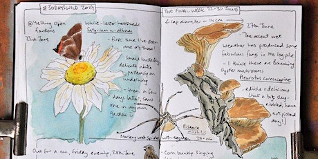 Nature Journaling with Sharon tickets