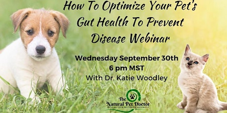 How To Optimize Your Pet's Gut Health To Prevent Disease Webinar tickets