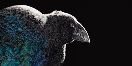 Jewels of ZEALANDIA - art launch with Karen Rankin tickets