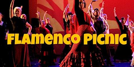Flamenco  Picnic tickets