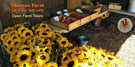 Thomas Farm Tour tickets