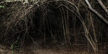 Cryptid Encounters in the Woods: A Haunted Camping Experience at SWN tickets