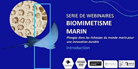 Biomimétisme Marin - Introduction générale billets