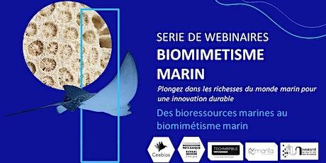 Des bioressources au biomimétisme marin billets
