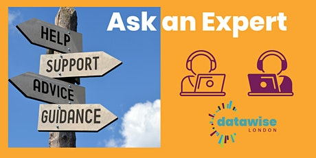 Ask an Expert about Surveys - with Alice