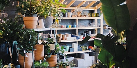 Green your Thumb: House Plant Workshop with Kyle Chow tickets