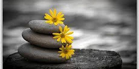 online 8 week MBSR Mindfulness program tickets
