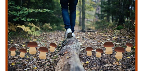 Venez vous familiariser à la cueillette des champignons sauvages! billets