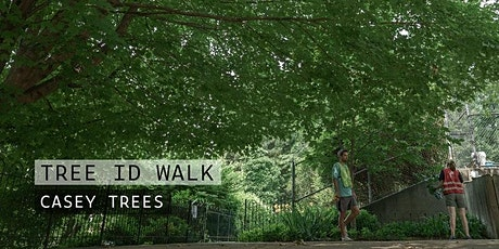 Tree Walk: Takoma Recreation Center tickets