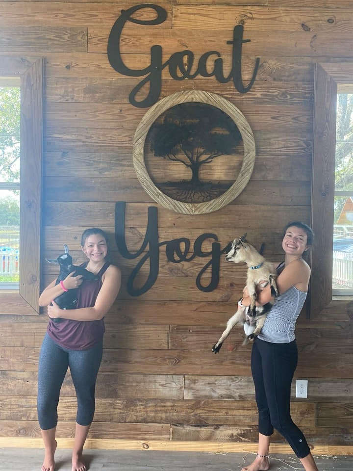 GOAT YOGA at Alaska Farms Orlando image