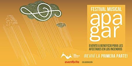 APAGAR (Festival musical solidario) REVIVI LA PRIMERA PARTE entradas