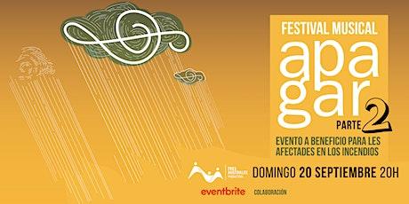 APAGAR (Festival musical solidario) SEGUNDA PARTE entradas