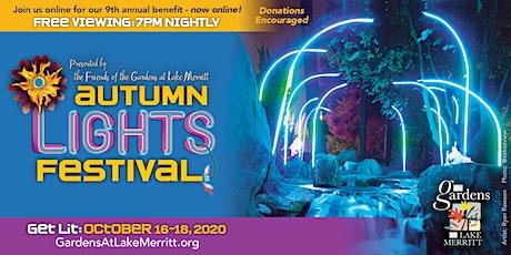 Autumn Lights Festival 2020;  Friday-TECH, Saturday-FAMILY, Sunday-FINE ART tickets
